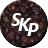 Skope Surveillance Suite [DEPRECATED] Icon