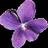 Violet UML Editor Icon
