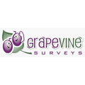 Grapevine 360 Degree Feedback Tool Icon