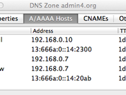 DNS host records