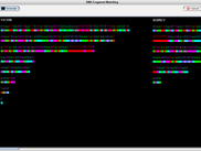 BioGenie Desktop Application - DNA fingerprinting