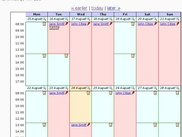 Calendar view of an instrument's bookings