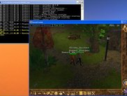 Calindor 0.3.0: Human_Ranger FOLLOWED by his party...