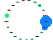 Example showing community obtained from a human Active Zone network using MixtureModel_v1r1. Node size here illustrates the degree correlated bridgeness of proteins with their overlapping communities in the network