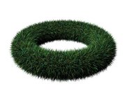 Placing grass on a torus (rendered with Aqsis)