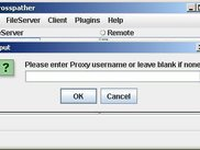 3. Proxy Authentication Prompt (if proxy settings enabled)