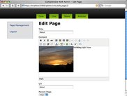 Edit Page View with TinyMCE
