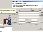 The ControlPanel provides access to an Agent.