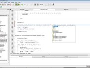 Edyuk 1.0.0-rc2 under Vista : Code completion at work (bis)