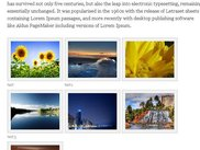 Single gallery page