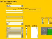 Input sheet for ruminant livestock