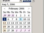 SWT Calendar (english, day view)