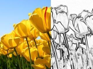 (image: http://a.fsdn.com/con/app/proj/lazpaint/screenshots/294477.jpg)