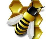"MUIbase ""the bee"" logo"