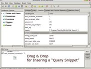 Drag and Drop Query Snippet
