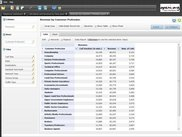 Detailed OLAP Report Table View