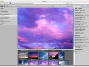 PHPture in Apple Safari showing a preview of an image.