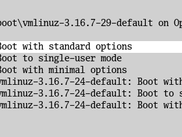 You can select from predefined boot options for Linux and Mac OS X