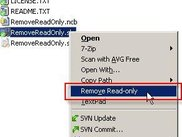 "Only the ""Remove"" item is shown if file(s) are read-only."