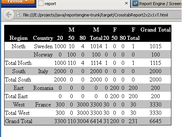 Html pivot table report
