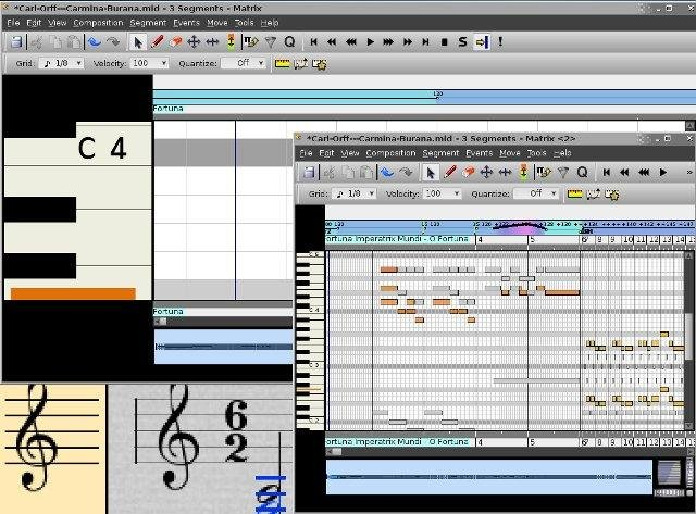 Flexible pan and zoom in notation and matrix editors