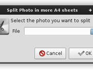 select file (app version)