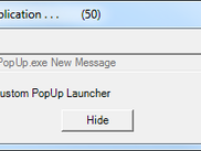 Custom Launch Window