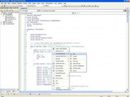 Mouse menu for versioned file clicking the code window