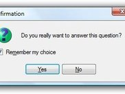 Message box with remember choice option.