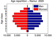 Simulated age pyramid in 2020 (city of Namur)
