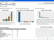 Visitors Web Visit Dashboard III