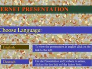 Web Presentation - Language Selection