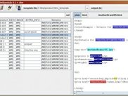The plain output view showing a particular output file.
