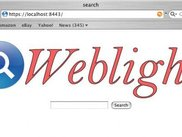 Web Search Interface of Weblight
