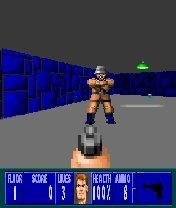 Wolfenstein 3D in-game
