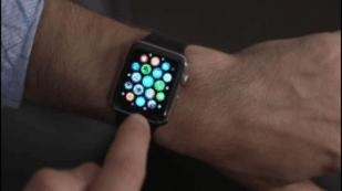 Insights Into the Apple Watch