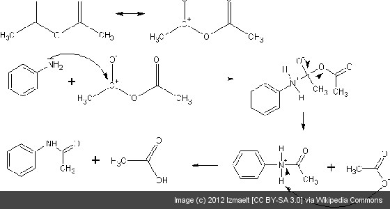 How hard is Organic Chemistry, really? : premed