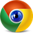 Chromensics - Google Chrome Forensics Icon