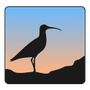 Curlew Multimedia Converter Icon