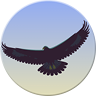 Eagle Mode Icon