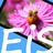 EasyImageSizer Icon