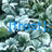 Frost Programming Language Icon