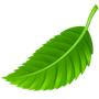 Greenie Icon