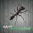 Nant Reloaded Icon