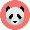 SQL Server Zoo Management  Icon