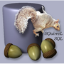 SQuirreL SQL Client Icon