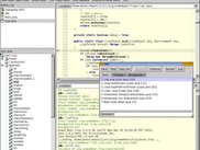 J 0.19.0 in the Java debugger