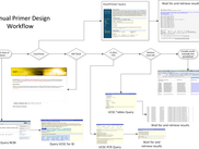 Manual Primer design process