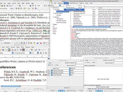 Bibus with MS Word, OOo, PubMed and eTBlast boxes