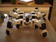 Custom-built Hexapod